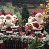 Natale 2019: da Giardineria addobbi top ed ecosostenibili